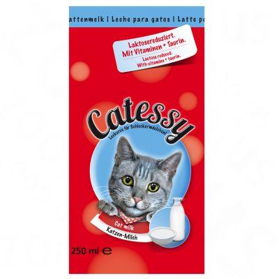 Lait Catessy pour chat
