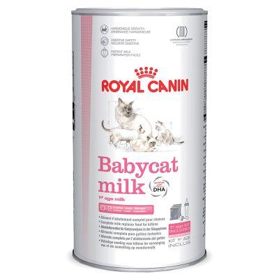Lait maternisé Royal Canin Babycat pour chaton