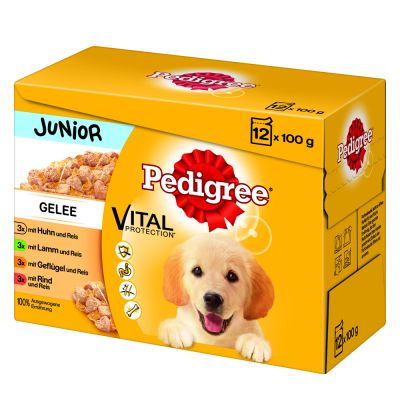 Multipack Pedigree Junior