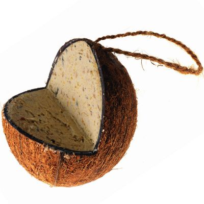 Noix de coco fourrée de graisse pour oiseaux sauvages