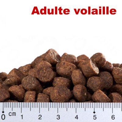 Offre découverte croquettes Smilla 1 kg
