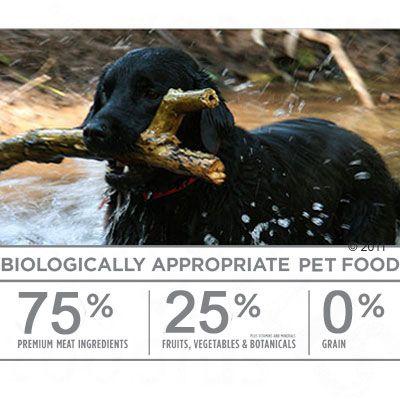 Orijen Regional Red Adult Dry Dog Food