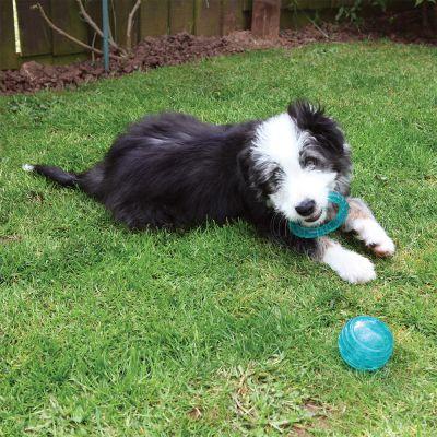 Palla gioco BioSafe per cuccioli