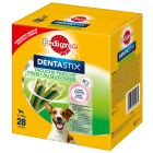 Pedigree Dentastix Fresh