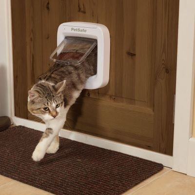 Petsafe Microchip Cat Flap Free P Amp P 163 29 At Zooplus