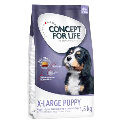 Probierangebot: 1,5 kg Concept for Life Hundetrockennahrung
