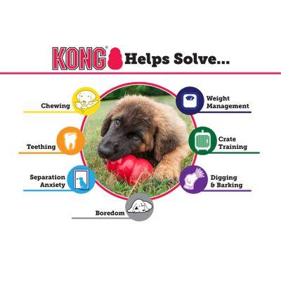 Zooplus Co Uk Shop Dogs Dog Toys Training Puppy
