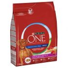 Purina ONE Medium/Maxi Adult Manzo