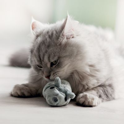 Ratón de juguete Valerio de Aumüller con valeriana para gatos