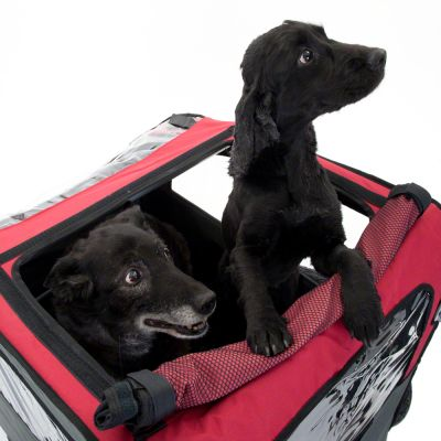 Remolque para perros Globetrotter