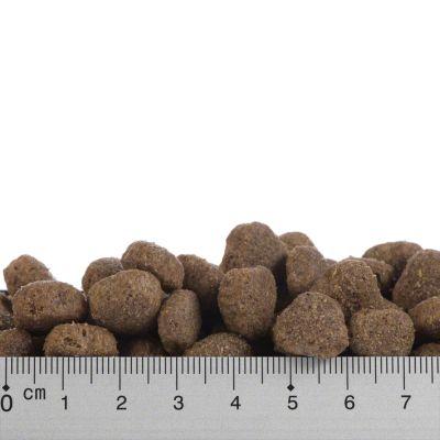 Restposten: Greenwoods Hundetrockenfutter Truthahn & Reis