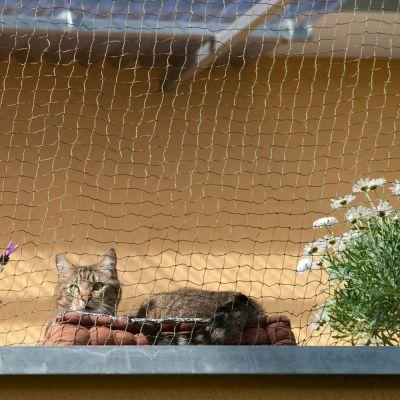 Rete protettiva per gatti con rinforzo metallico
