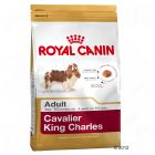 Royal Canin Breed Cavalier King Charles Adult pour chien