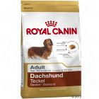 Royal Canin Breed Dachshund Teckel Adult Hondenvoer
