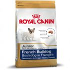 Royal Canin Breed French Bulldog Junior pour chiot