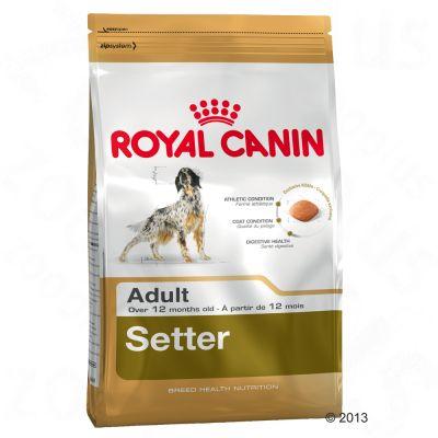 Royal Canin Breed Hondenvoer - Setter Adult