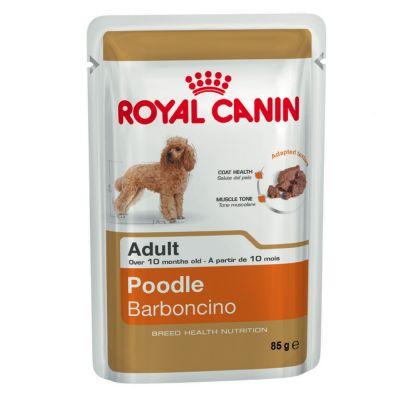 Royal Canin Breed Poodle Adult Hondenvoer