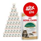 Royal Canin Breed Wet Cat Food Saver Pack 48 x 85g