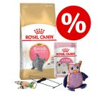 Royal Canin British Shorthair Kitten startpack
