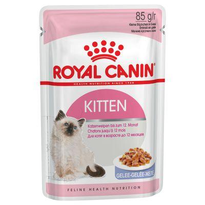 Royal Canin 400 g Kitten Trockenfutter + 12 x 85 g Kitten Instinctive