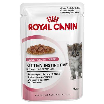 Royal Canin Kitten Instinctive in Jelly