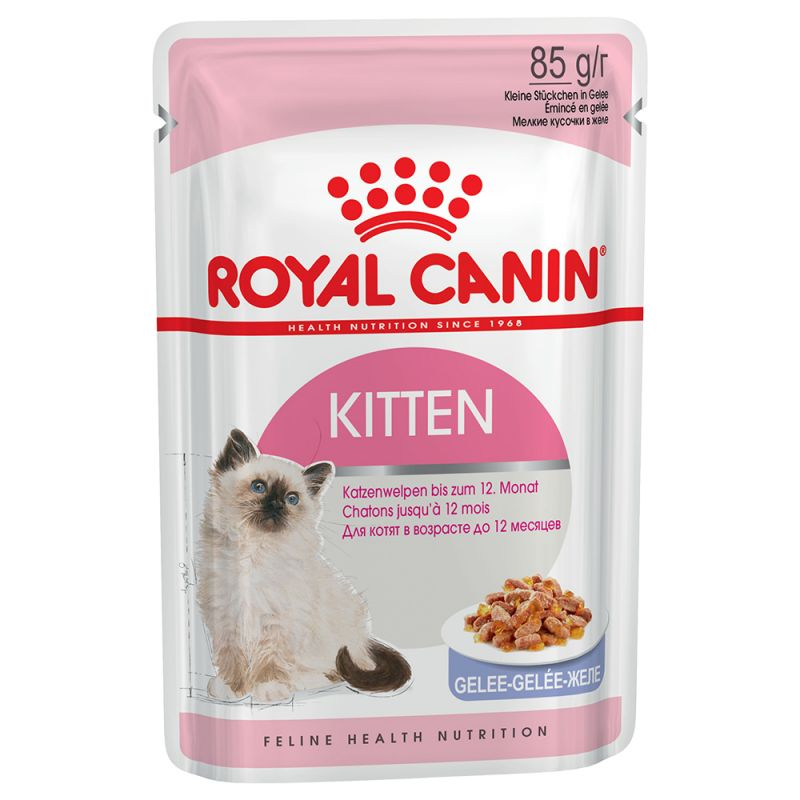 Royal Canin Canned Dog Food Uk