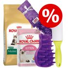 Royal Canin Maine Coon Kitten startpack