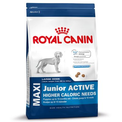 Royal Canin Maxi Junior Active Hondenvoer