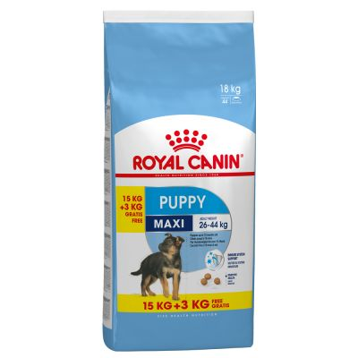 Royal canin maxi puppy croquettes pour chiot zooplus - Croquette royal canin maxi junior ...