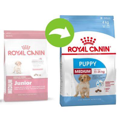 royal canin medium junior buy now at zooplus. Black Bedroom Furniture Sets. Home Design Ideas