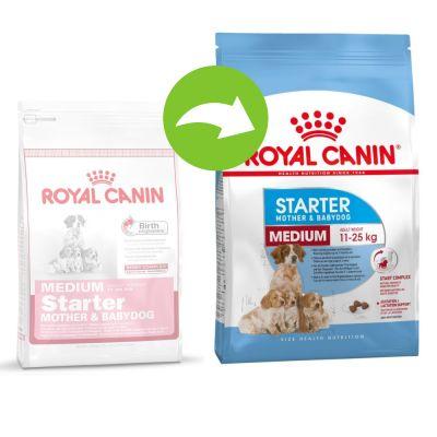 royal canin medium starter mother babydog buy now at. Black Bedroom Furniture Sets. Home Design Ideas
