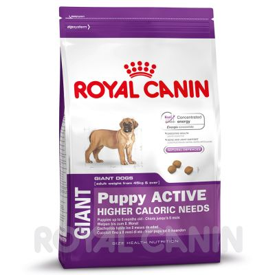 Royal Canin Size Economy Packs