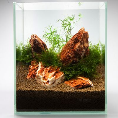 Samurai Rock - Aquarium Decoration