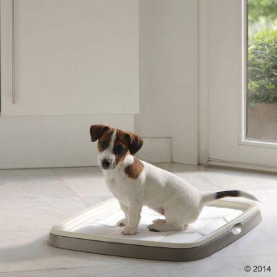 Savic Puppy Trainer Starter Set