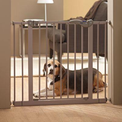 Saving Dog Barrier 2