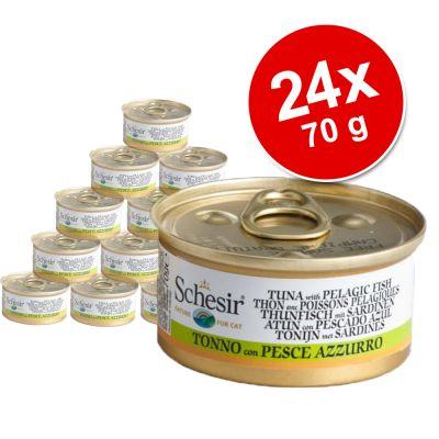 Schesir in Brodo di cottura 24 x 70 g