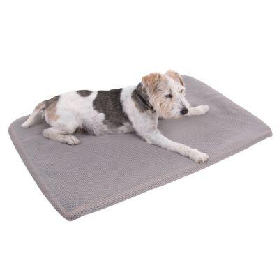 Sensopet Cooling Dog Mat Top Deals On Dog Beds At Zooplus