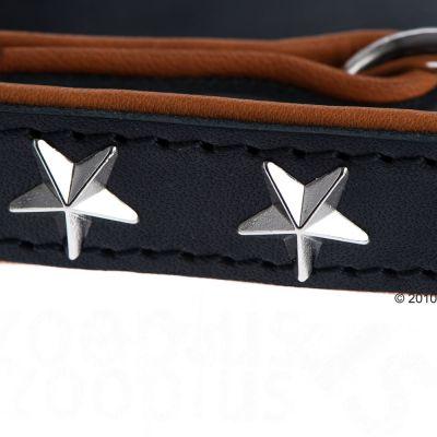 Set collare e guinzaglio - Heim Stars