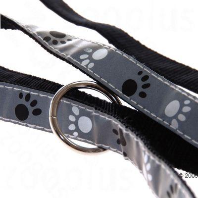 Set collare e guinzaglio - Trixie Silver Reflect