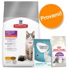 Set gatti sensibili Hill's Science Plan Sensitive Stomach & Skin, Concept for Life & Royal Canin