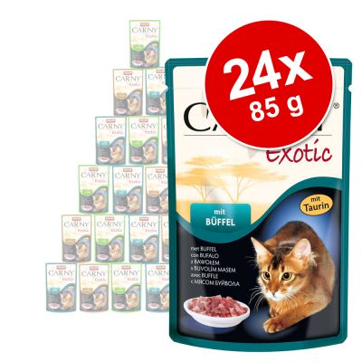 Set prova! Animonda Carny Exotic 24 x 85 g