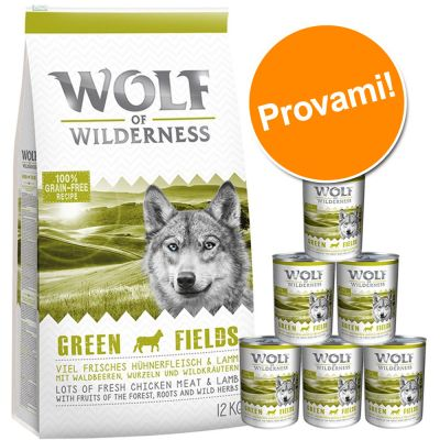 Set prova Wolf of Wilderness Adult