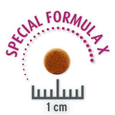 Set risparmio Tigerino Crystals + Concept for Life