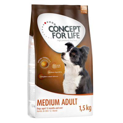 Set transition! Concept for Life Medium - verso la vita adulta
