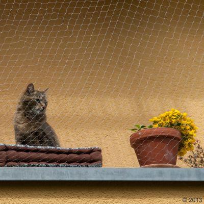 Siatka ochronna dla kota, przezroczysta