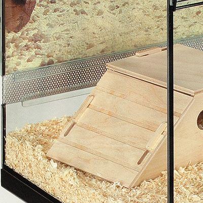 Small Pet Terrarium Kerry