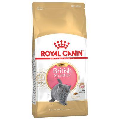 Sparpaket Royal Canin Kitten 2 x 10 kg / 4 kg