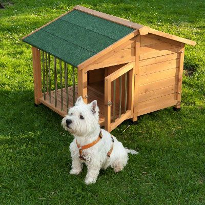 Sylvan Special Dog Kennel