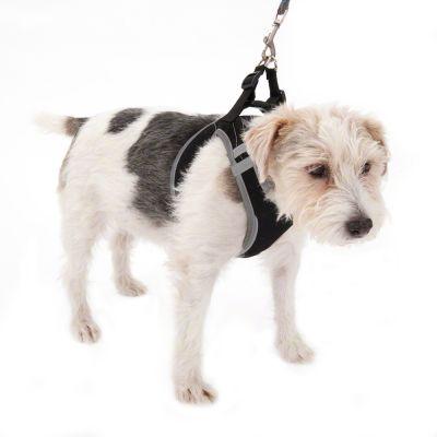 Szelki dla psa Feel Free