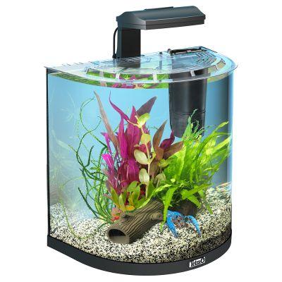 tetra aquaart explorer line halfmoon aquarium komplett set g nstig bei zooplus. Black Bedroom Furniture Sets. Home Design Ideas